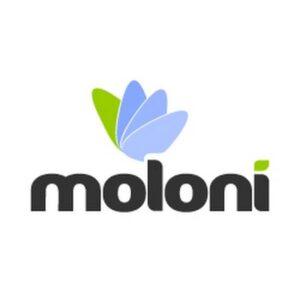 Software Faturação Moloni FLEX 1